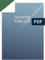 Opinión Publica