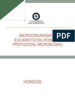 Clase 4. Eucarioticos 2018.pdf