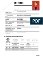 CV IIN OK.pdf