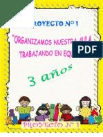 01 Proyecto Organizacion Del Aula 2017 (1) Lorena