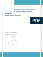 Impact of Corruption on Public Sector Organization's Efficiency