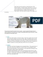 Writing polar bear