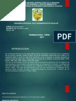 DIAPODITIVA DE DESEMBARQUE EN PUCALLPA 2017 -2.pptx
