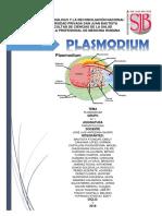 Plasmodium Final