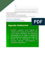 Agenda Ambiental Algo de Apa