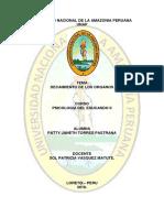 TEMA DECAIMIENTO DE LOS ORGANOS.docx