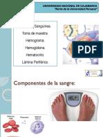 CLASE 05. Fisiología Hemática.pptx
