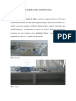Areas y Equipos de Laboratorio Biotecnologia