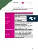 3. Imágenes de La Organización