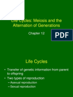 Chapter12 Lecture 2 - Meiosis and Alternation of Generation