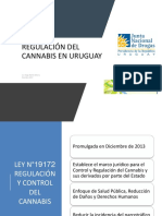 REGULACIÓN DEL CANNABIS EN URUGUAY final