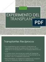 Experimento Del Transplante