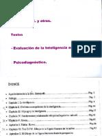 Zenequelli-CAP.vi - D.F.H. en Evaluacion Inteligencia en La Infancia.