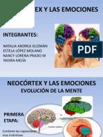 Neocortex Exposicion