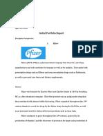 sample initial portfolio report