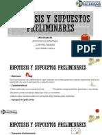 Hipotesis y Supuestos Preliminares