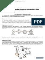 7 CIENCIAS_ 2 Lección_ Ciclos Reproductivos en Organismos Sencillos