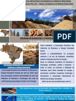 Celso Oliveira - A Energia Da Biomassa e o Potencial Do Brasil