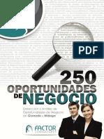 250 oportunidades de negócio