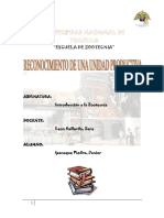 Informe de Introduccion