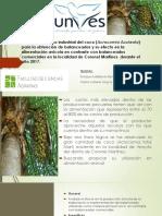 Aprovechamiento Industrial Del Coco (Acrocomia Aculeata)