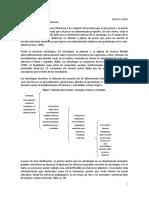estrategias_tobbon_0 (1).docx