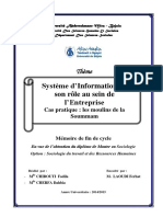 Système d'Information Et Son Rôle Au Sein de l'Entreprise