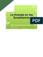 COMO SE TRANSFORMA LA ENERGIA.docx