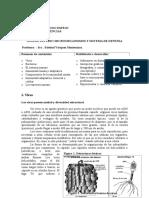 Documento_ Microbios_y_ sistemas_de_ defensa.doc
