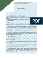 derecho-ambiental.doc
