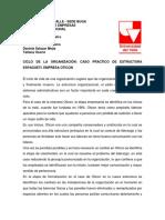 CICLO DE LA ORGANIZACIÓN