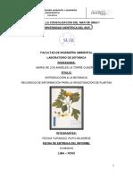 Ejemplos de Recursos de Información-cascada de Info.