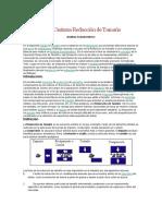 La Operación Unitaria Reducción de Tamaño.docx