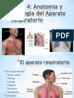 aparato_respiratorio.ppt