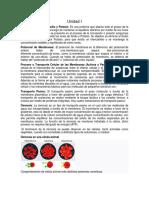 Fisiologia Unidad 1 y 2