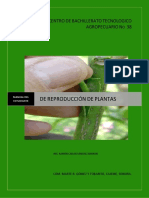 1. Manual de Reproduccion de Plantas