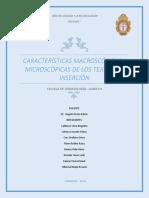 Características Macroscópicas y Microscópicas de Los Tejidos de Inserción 2