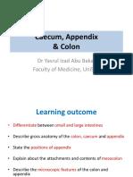 Colon, Caecum & Appendix 2017