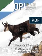 hoop91.pdf