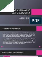 Anabolisme Asam Amino Dan Siklus Urea