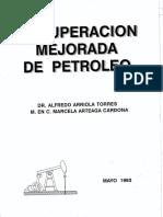 Recuperación Mejorada de Petróleo.pdf