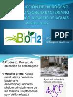 Bioproducción de Hidrogeno Con Un Consorcio Bacteriano Anaeróbico
