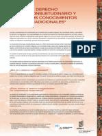 DERECHO CONSUETUDINARIO.pdf