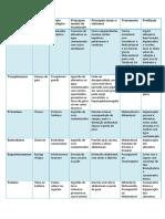 Processual de Parasito N2-1
