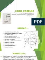 Morfología Forense i.t.s