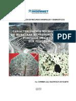 Caracterizacion Microscópica_muestras_PorfidosCu Sur Peruano