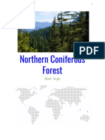 Olivia's Coniferous Forest Brochure