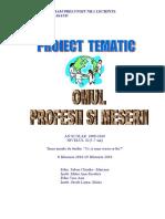 proiect_meserii_2010.doc
