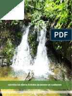 Gestión de Venta Futura de Bonos de Carbono.pdf
