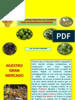 Exposición - Frutales Huanuco